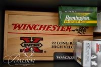 .22 LR and Short HP and 2 Ammo Cases