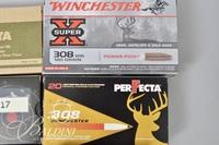 .308 WIN Ammo and 1 Ammo Case