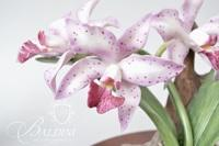 (2) Bisque Floral Including The Glossy Amethyst Orchid