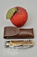 Gucci Jumbo Survival Knife by Tonerini Scarperia Inox with Stag Handle in Leather Case