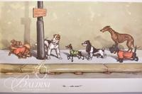 "Boris O'Klein Dirty Dogs of Paris Series Prints ""So...Who Cares?!"""