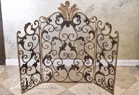 Brass Fireplace Screen with Foliate Detail