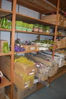 All Floral in Boxes and Containers