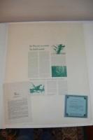 "Richard Sloan Lithograph ""Nene"" Plate 41, Signed"