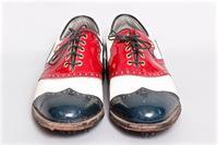 FootJoy Golf Shoes Size 10D