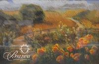 Pabell Original Pastel and Pencil Drawing of Poppies