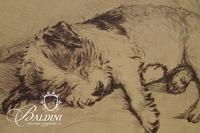 """Chris T. Ladd """"Sienna Girl"""" '04 Photograph and Sleeping Dog Offset Lithograph"""