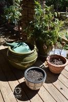 (4) Ceramic Pots