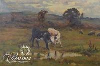 Pastoral Scene Dated 1894, Signature Illegible