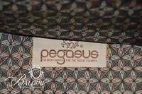 """Pegasus"" Brand Leather Luggage"