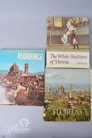 (5) Books on Vienna, Florence and Rome